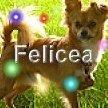 Felicea